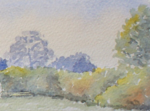 learn Watercolour, watercolour tutorial, hedgerow